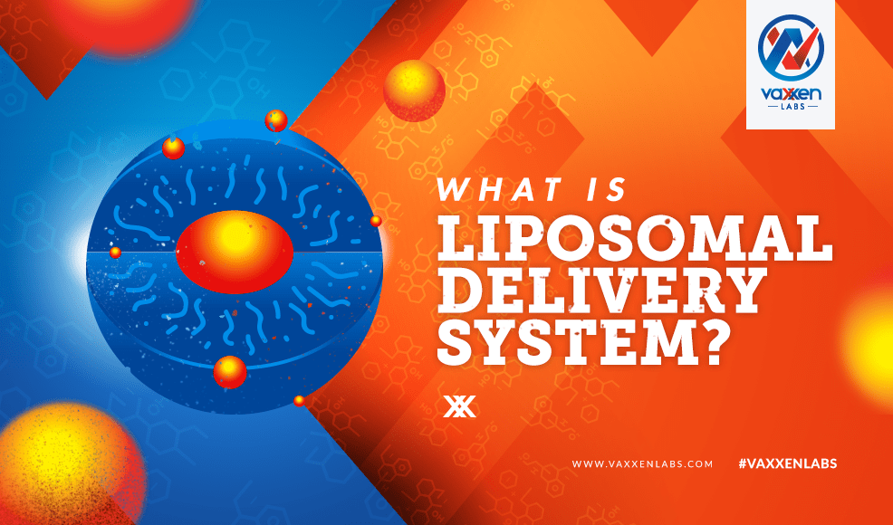What is liposomal delivery system?