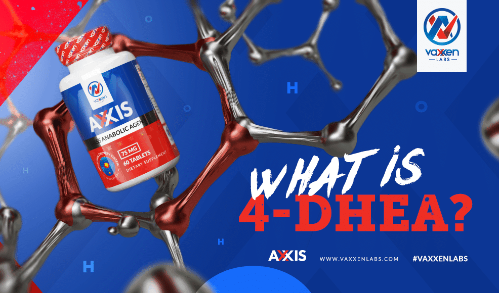 What is 4-DHEA?
