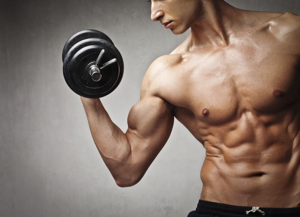 build muscle with whey protein powder