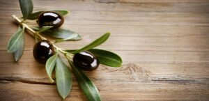 olive leaf extract dosage