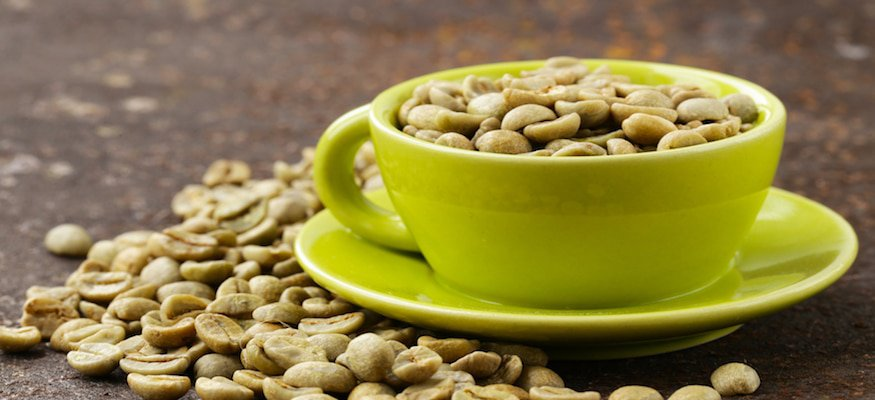 Green Coffee Bean Extract Benefits Vaxxen Labs Inc