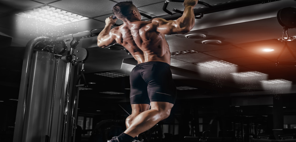 strong back muscle