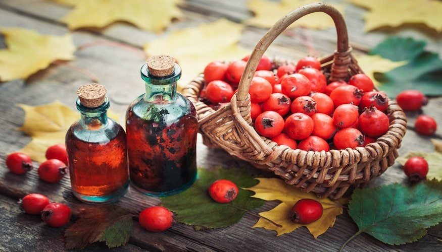 what is hawthorn berry